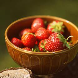 taste of summer by malenka740715