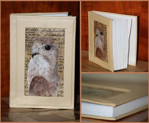 Eagle book by African-Amber