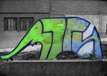slonche by zorrri