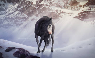 Came like a winter snow by lunoyex