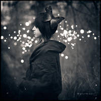 Lights by Thaess