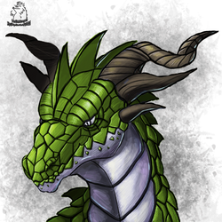 Dragons Favourites By Toadma On Deviantart