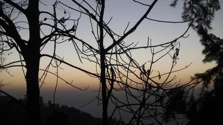 shaded evening by zahidnabi
