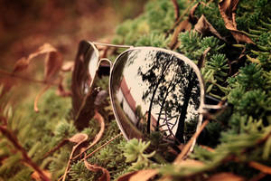sunglasses by stevenfields