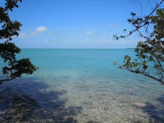 Miami by Nanamine-Katachie