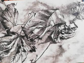 Dead leafs  by CyanBerryy