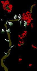 Red roses by svetlost70