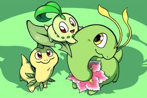 The Chikorita Family by Zerochan923600