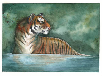 Watercolor Tiger by Zerochan923600