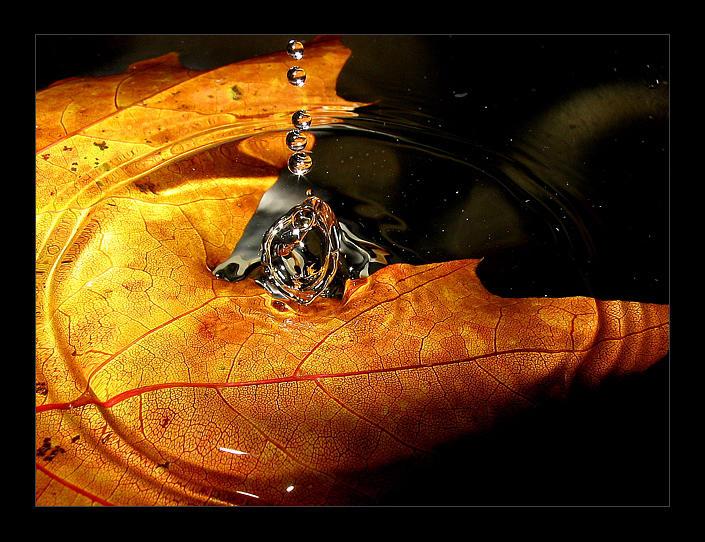 autumn rain by soulfuric