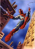 Spiderman by DaveDeVries