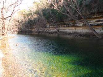 Bull Creek St. Edward's Park1 by yarro