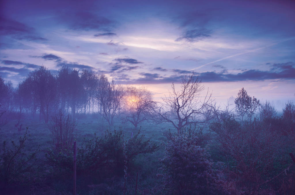 Sunrise glow by HendrikMandla