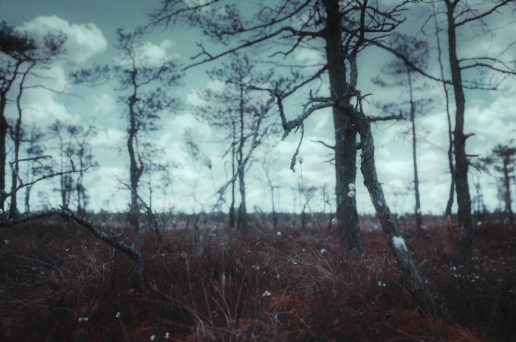 Lost in the bog by HendrikMandla