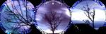 blue trees circle divider by cal-vain