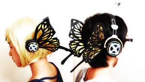1000hits butterfly ID by rorin25cc