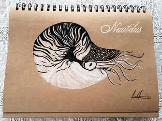 Nautilus by Morloth88
