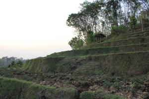 landscape by andhikazanuar