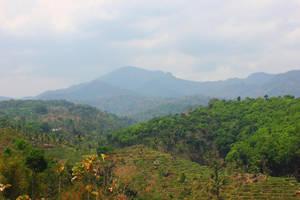 mountain by andhikazanuar