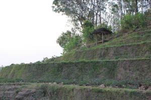 hut by andhikazanuar