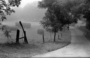 Smokey Trail by fotobug8
