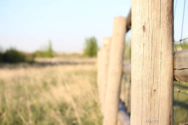 The Fence. by paintballz