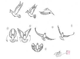 Draw a Bird 2 by Diana-Huang