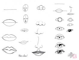 Draw Face Parts by Diana-Huang