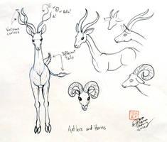 Draw Deer 3 by Diana-Huang