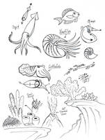 Draw Squid Nautilus Cuttlefish by Diana-Huang
