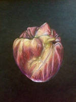 Heart Apple 2000 by Diana-Huang