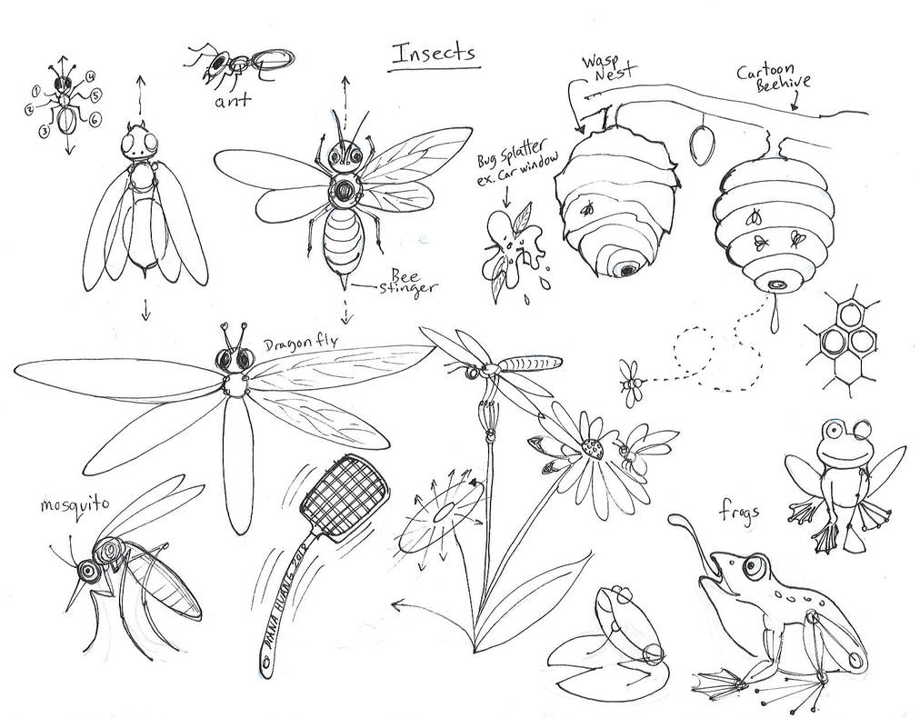 Draw Insects Revision by Diana-Huang