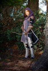 Leliana - Master Archer - Dragon Age Inquisition by Lithium-Toxide