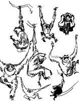 Gibbon studies LA Zoo by davidsdoodles