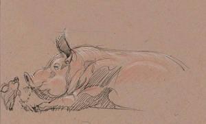 Pig Invasion at Disney ..still by davidsdoodles