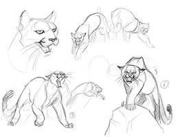 Cougar Concepts_3 by davidsdoodles