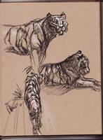 101108 Zoo Class by davidsdoodles