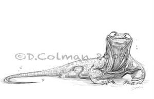 Komodo Yo yo by davidsdoodles