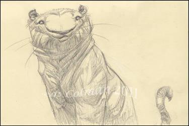 Tiger Sketch_CTN Book by davidsdoodles