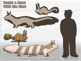 Sentret + Furret: Size and Length by Chari-Artist