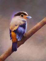 Birdie Study 10 Day #171 by AngelGanev