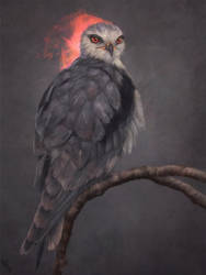 Birdie Study 22 Day #225 by AngelGanev