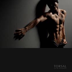 HIDE-AWAY by Torsal