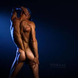 BLUETON by Torsal