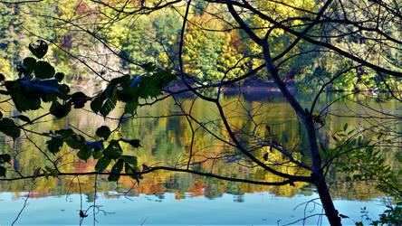 autumn I - 2018 by Bildband