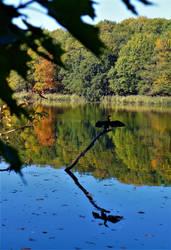 autumn III - 2018 by Bildband