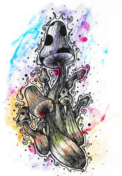Mushroom Flow by Elavizz