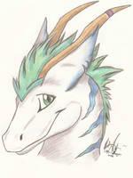 Dragon Head. by Little-Dragon-Wolf