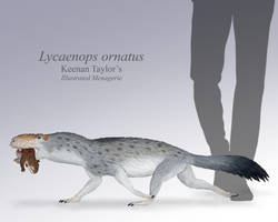 Lycaenops with Prey by IllustratedMenagerie