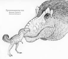 Inktober Day 9: Tyrannosaurus by IllustratedMenagerie